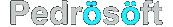 شرکت طراحی وب سایت پدروسافت